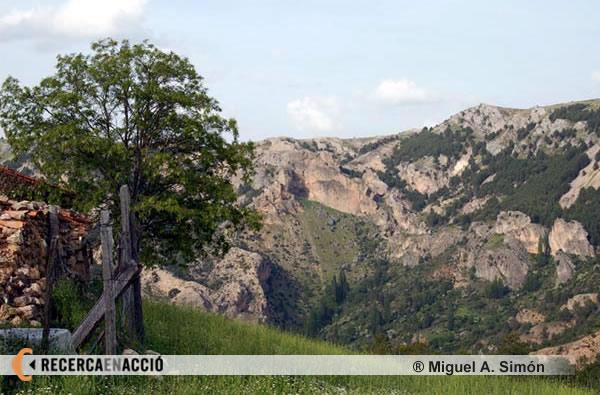 Paisatge de Cazorla (Andalusia)