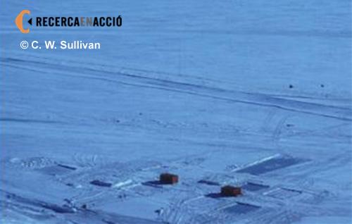 Experiments a l'Antàrtida