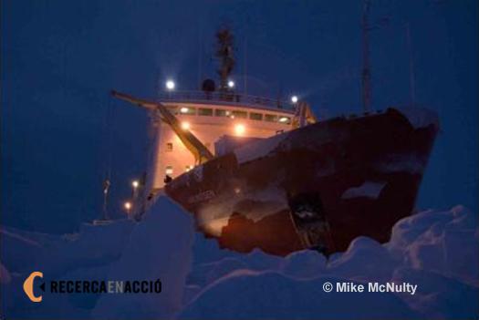L'Amundsen envoltat de gel