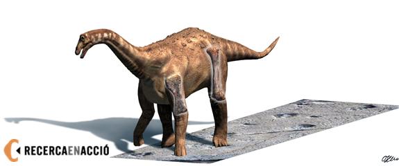Els titanosaures, uns dinosaures enormes